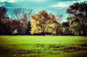 Maisonneuve Park