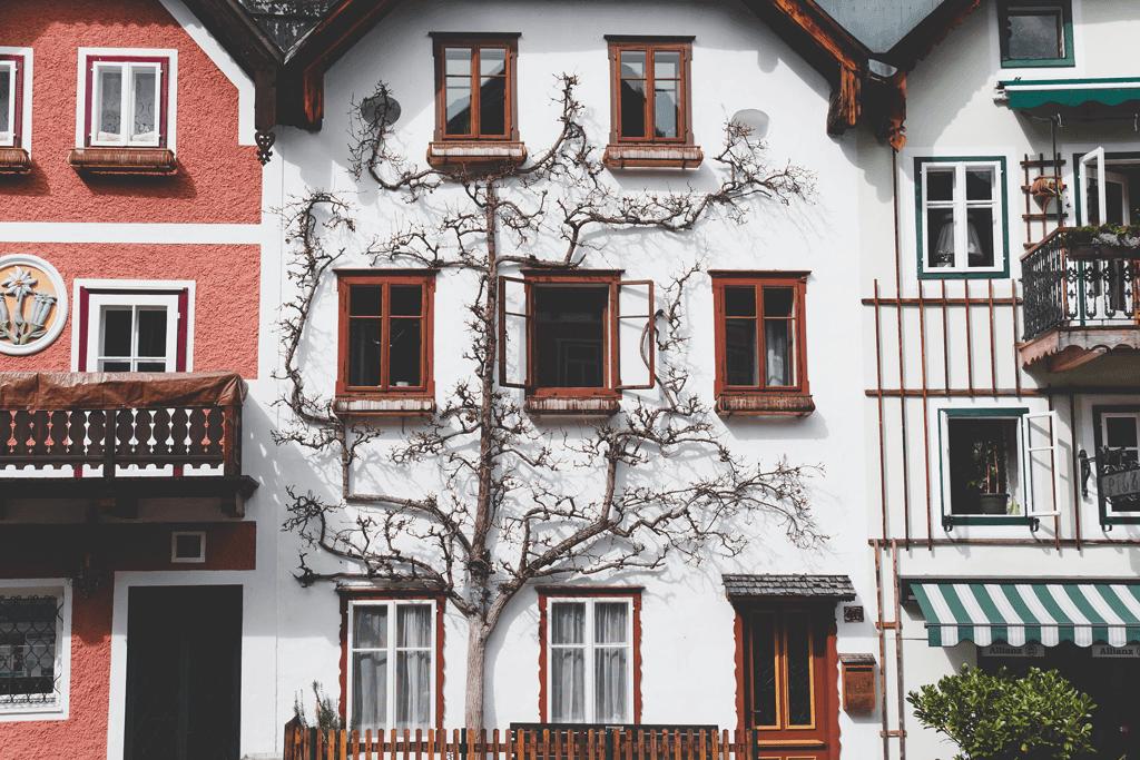 Assurance locataire vs propriétaire