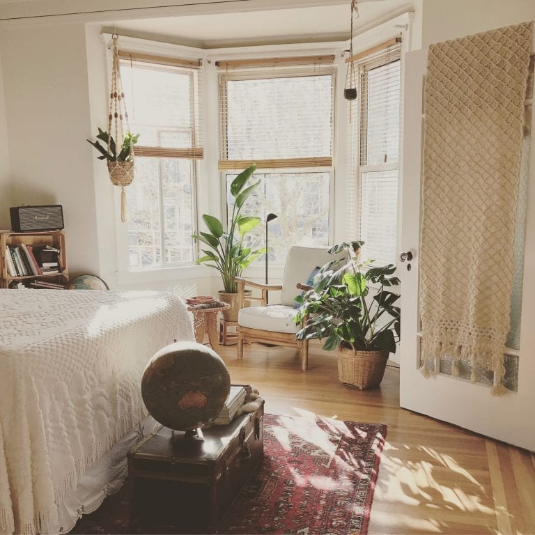Decorating rental with plants 2