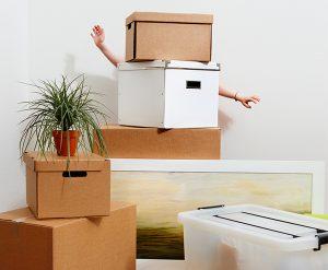 movingboxes_produits