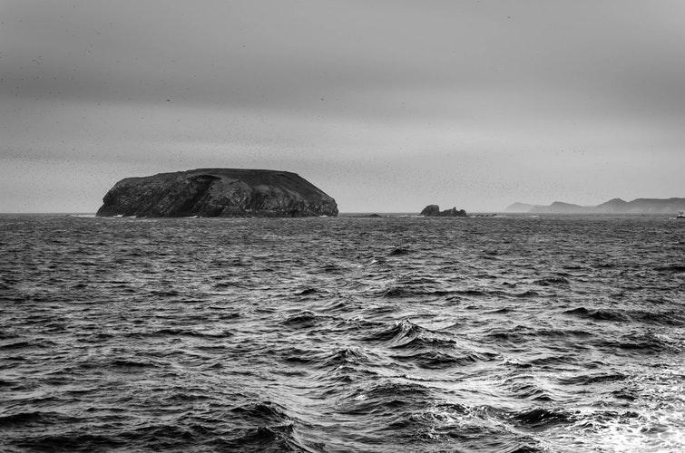moving to Newfoundland